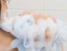 Behandling av hårsäcksinflammation